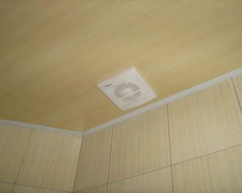 пластиковые панели на потолок