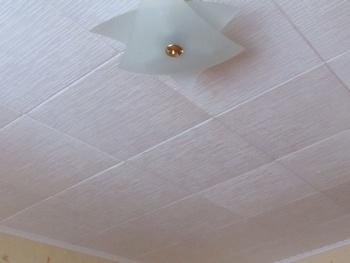 Установка потолочных панелей